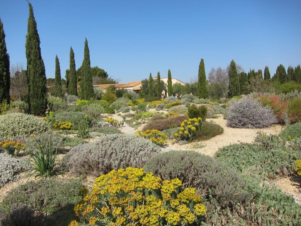 jardin-seco-paisajismo