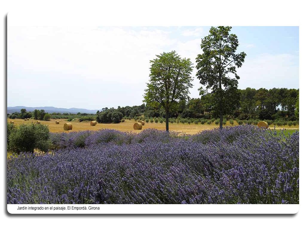 Jardín integrado en el paisaje. El Empordà. Girona.